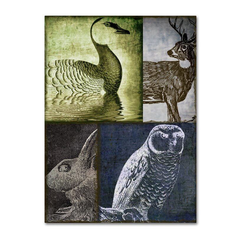 Trademark Art Hunting Season Vii By Color Bakery Graphic Art On Wrapped Canvas Wayfair