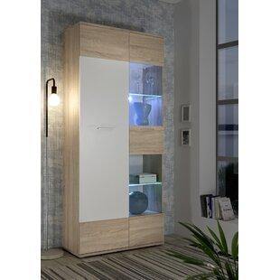 Raze Standard Display Cabinet By Brayden Studio