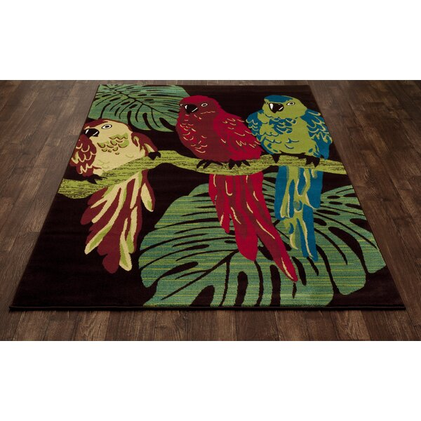 Art Carpet Antigua Parrots Brown/Green Indoor/Outdoor Area Rug U0026 Reviews |  Wayfair