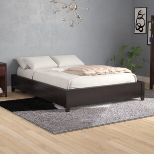 Rune Storage Platform Bed by Mistana