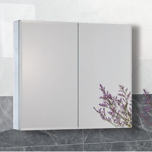 Nowlin Recessed or Surface Mount Frameless 2 Door Medicine Cabinet with 4 Adjustable Shelves