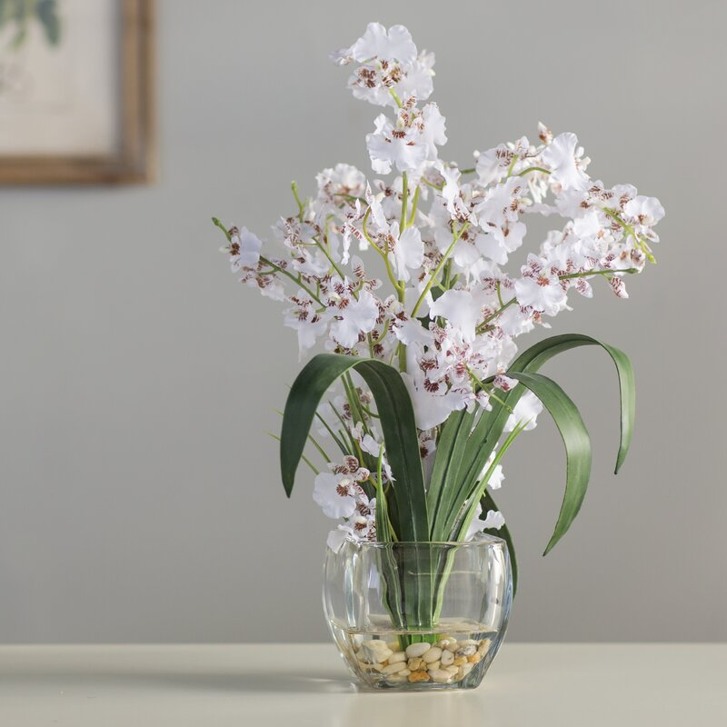 Andover Mills Silk White Orchids Floral Arrangement in Short Oval ...