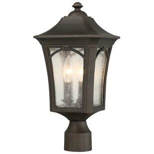 Reviews Coyan 3-Light Lantern Head By Darby Home Co