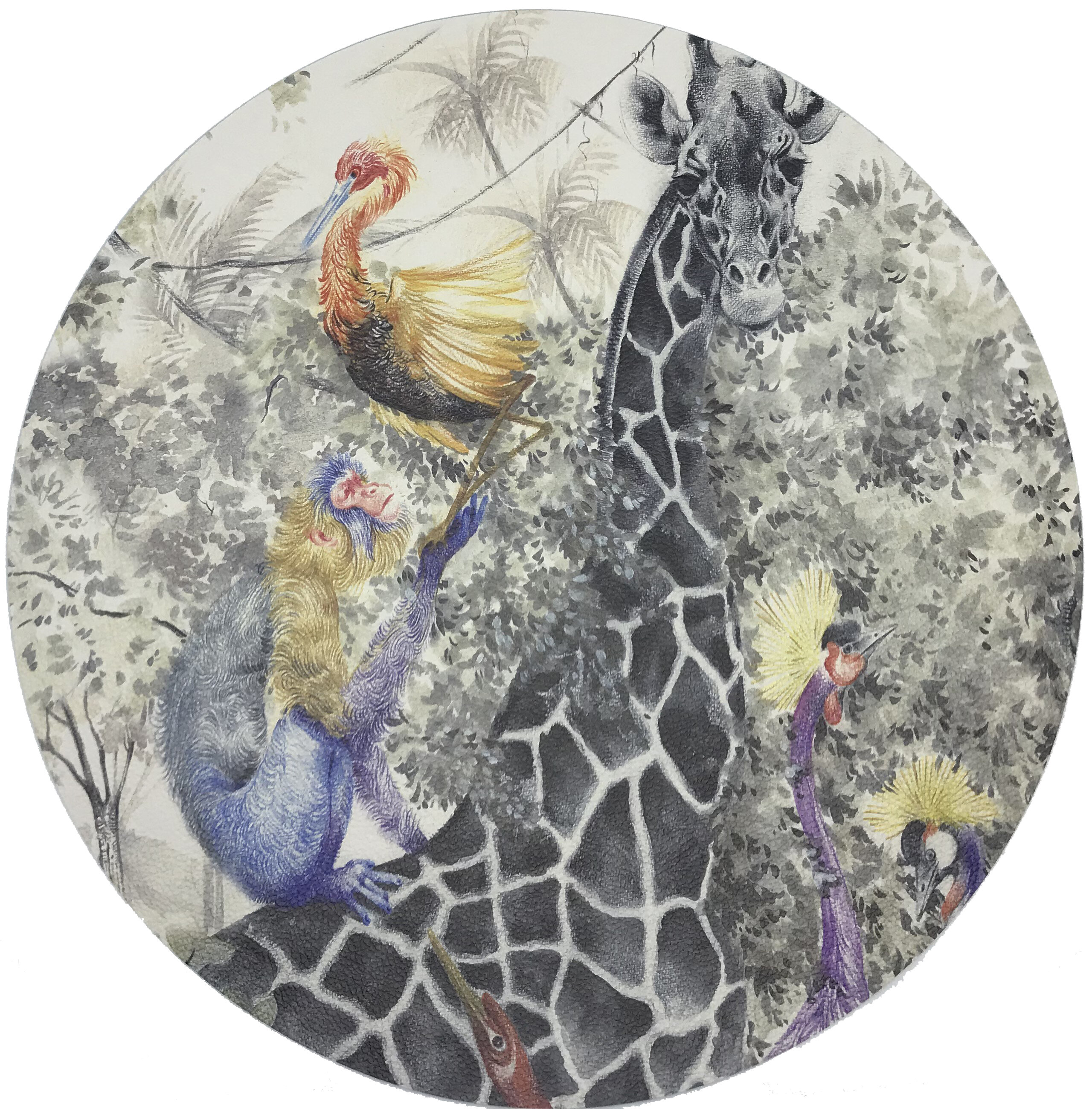 Nicolette Mayer Arcadia Giraffe Pebble 16 Vinyl Placemat Wayfair