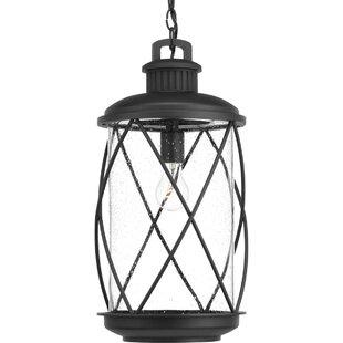 Gracie Oaks Maestas 1-Light Outdoor Hanging Lantern