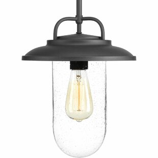 Breakwater Bay Emmalyn 1-Light Cone Pendant