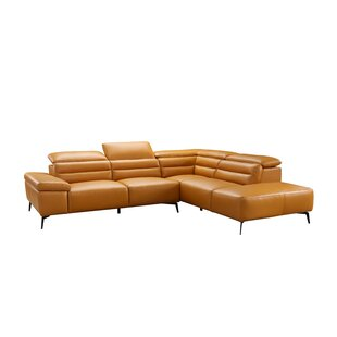 https://secure.img1-fg.wfcdn.com/im/62131191/resize-h310-w310%5Ecompr-r85/5305/53051114/kean-leather-sectional.jpg
