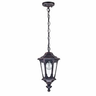 Review Coffield 1 Light Outdoor Hanging Lantern