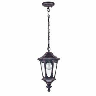 Sale Price Coffield 1 Light Outdoor Hanging Lantern