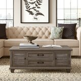 Altenburg Lift Top Coffee Table with Storage by Greyleigh™