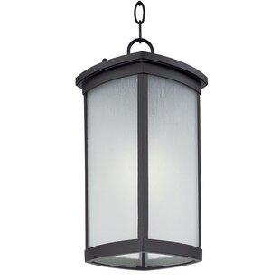 Latitude Run Fielden 1-Light Outdoor Hanging Lantern