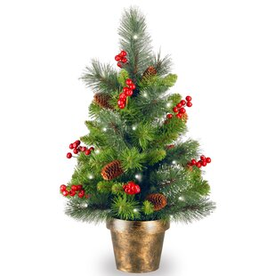 Spruce Small 2u0027 Green Artificial Christmas Tree With 35 White Lights With  LED