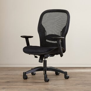 Pascarella Mesh Task Chair by Symple Stuff Cool
