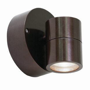 Tasker Modern 1-Light LED Outdoor Spotlight