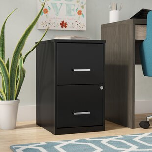 Carson 18 2-Drawer File Cabinet by Ebern Designs