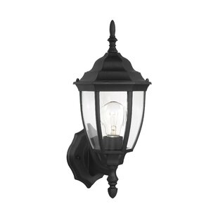 Great Price Raritan Outdoor Sconce By Alcott Hill