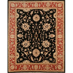 Read Reviews Coralie Oushak Peshawar Oriental Hand-Knotted Wool Burgundy/Black Area Rug ByBloomsbury Market