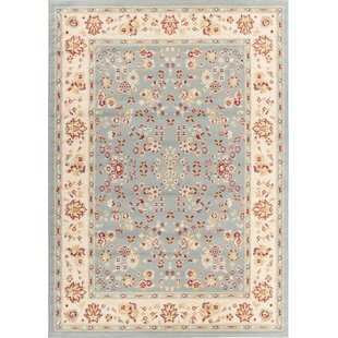Reviews Aldenport Classic Blue Area Rug By Charlton Home