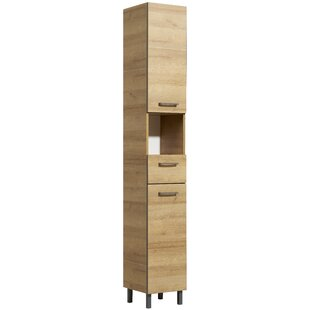 Pegram 30 X 195.5cm Free-Standing Cabinet By Brayden Studio