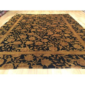 Hand-Knotted Black/Brown Area Rug