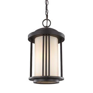 Dunkley 1-Light Lantern Pendant by Darby Home Co