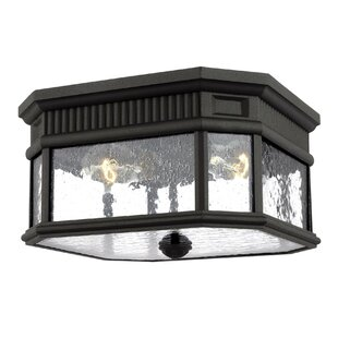 Chilhowee 2-Light Outdoor Flush Mount by Darby Home Co