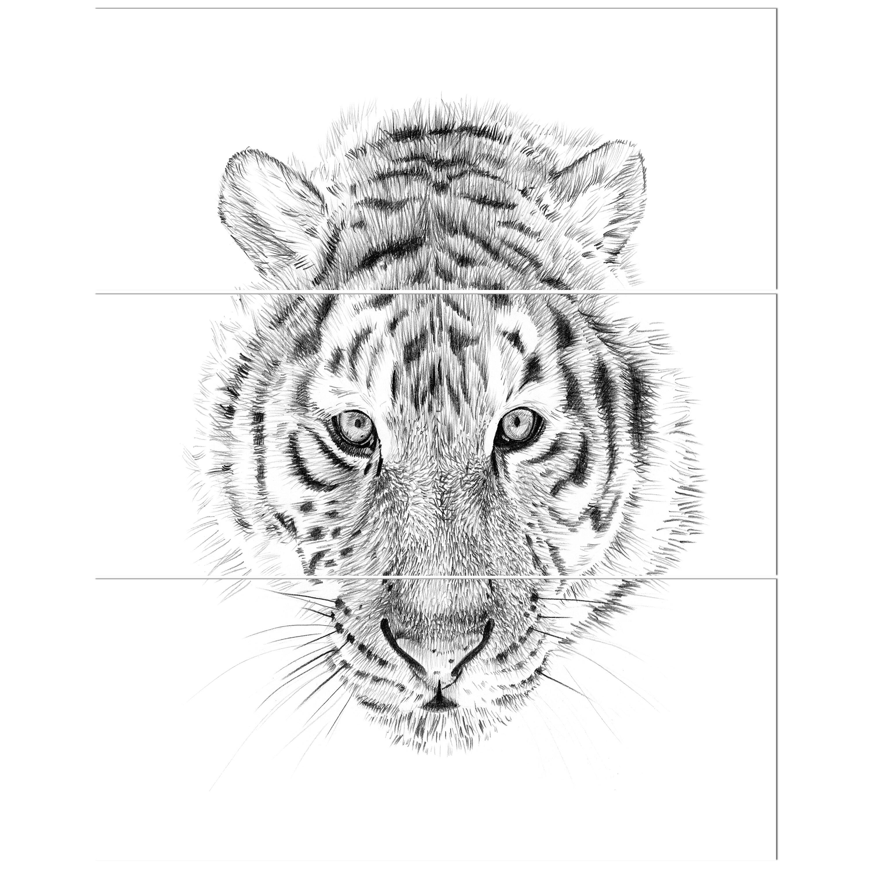 Tiger Sketch Art