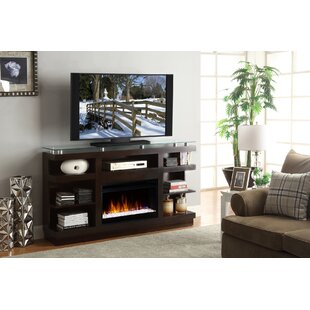 Emanuel TV Stand for TVs up to 65 with Fireplace by Wade Logan