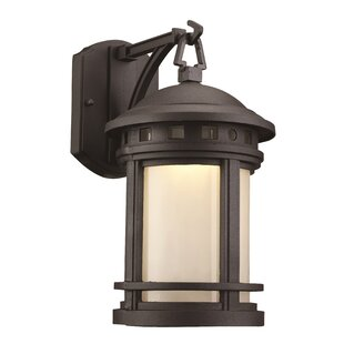 Comparison Ashberry 1-Light Outdoor Wall Lantern By Loon Peak