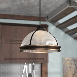 Palisade 2-Light Dome Pendant