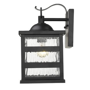 Maumee Outdoor Wall Lantern