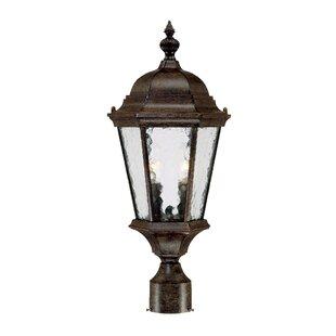 Darby Home Co Brook Lane Outdoor 2-Light Lantern Head