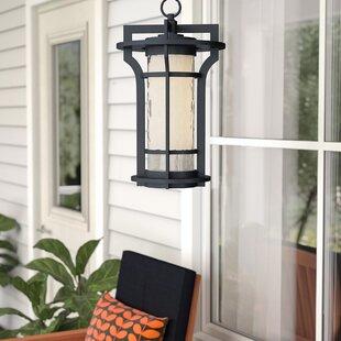 Millwood Pines Espitia 1-Light Outdoor Hanging Lantern
