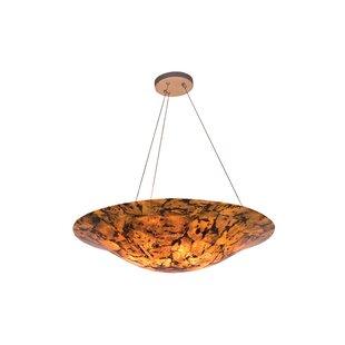 Varaluz Big 4-Light Bowl Pendant