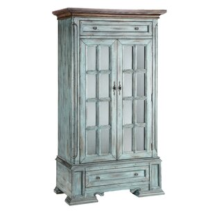Painted Treasures 2 Door Moonstone Tall Accent Cabinet by Stein World
