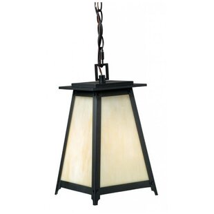 Camargo 1-Light Outdoor Hanging Lantern