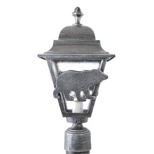 Alcott Hill Penfield Bear Series 1-Light Lantern Head