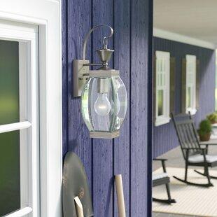 Lark Manor Vieux 1-Light Outdoor Wall Lantern