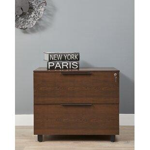 Ebern Designs Albin 2-Drawer Lateral Filing Cabinet