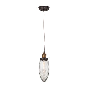 Wrought Studio Sheehan 1-Light Novelty Pendant