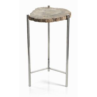 Foundry Select Belsay Petrified Wood Tree Stump End Table
