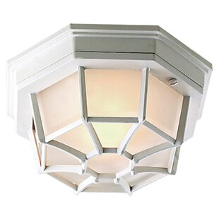 Best Reviews Oakhill Large Hexagon Exterior 1 Light Flush Mount By Charlton Home