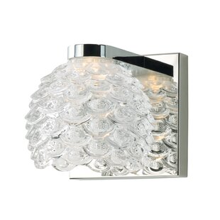 Elmsford 1-Light LED Bath Sconce by Orren Ellis