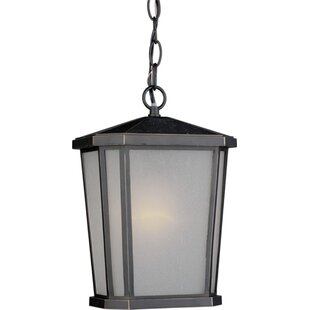 Brayden Studio Esters 1-Light Lantern Pendant