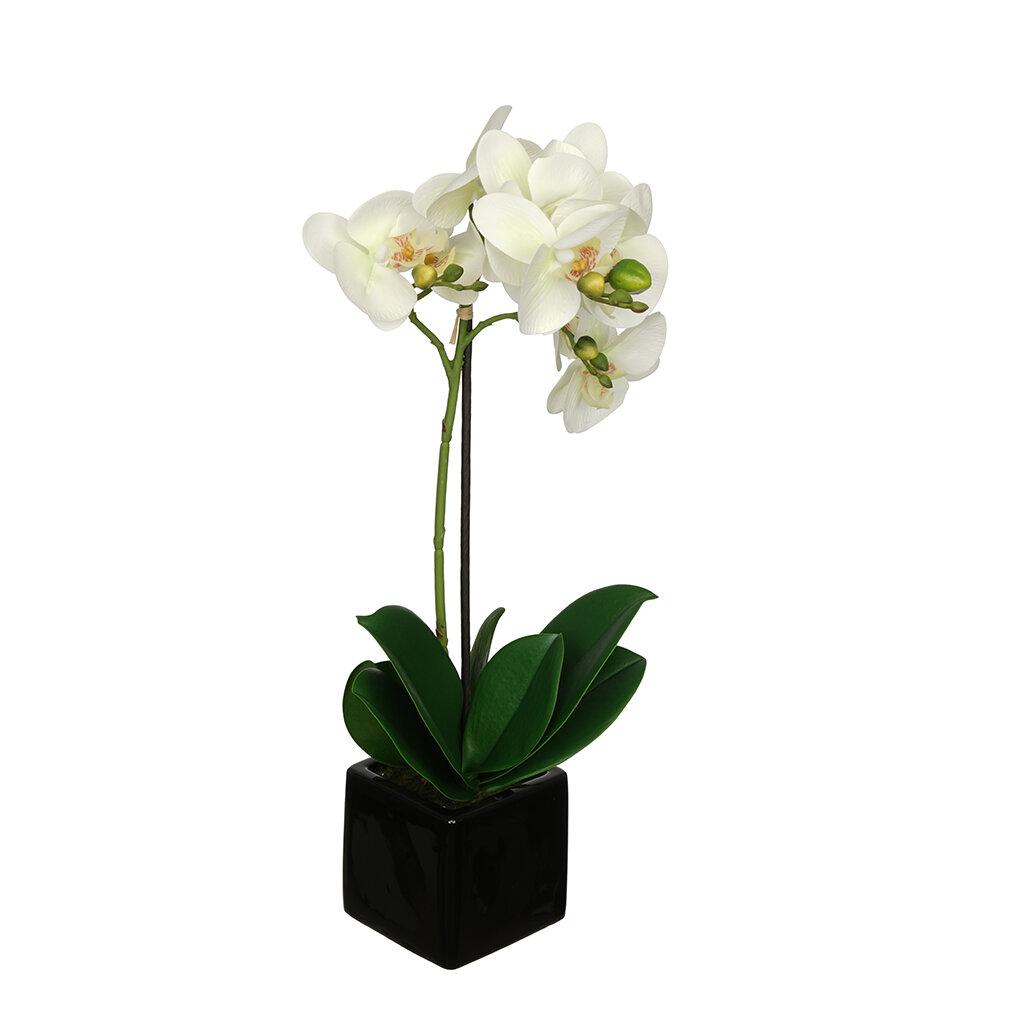 House Of Silk Flowers Credainatcon