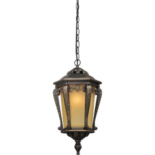 Bock 1-Light Outdoor Pendant