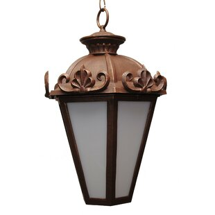 Alcott Hill Petrey 3-Light Outdoor Hanging Lantern