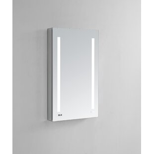 Donnelly 24 x 40 Recessed or Surface Mount Frameless Medicine Cabinet with 4 Adjustable Shelves and LED Lighting By Orren Ellis