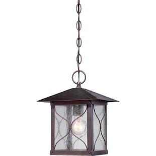 Dufresne 1-Light Outdoor Hanging Lantern