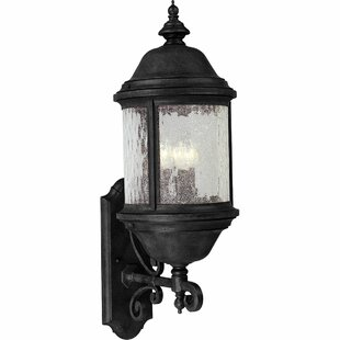 Alcott Hill Drumakeely 3-Light Outdoor Sconce